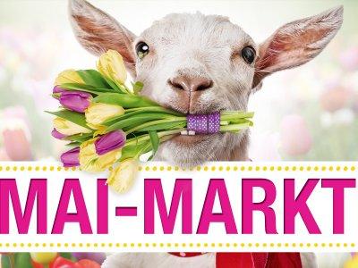 3. Bitburger Mai-Markt