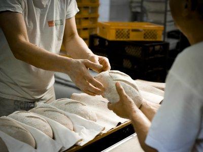 Eifelkreis Bitburg-Prüm: Bis zu 650 Euro mehr für Bäcker-Azubis